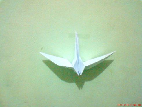 Download 710+ Foto Gambar Burung Dari Kertas Origami  Paling Unik